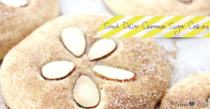 bake: Sand Dollar Cinnamon Sugar Cookies