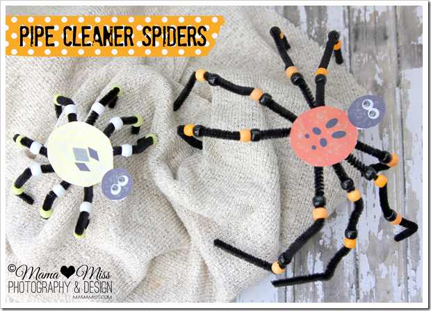 Pipe Cleaner Spiders Mama Miss