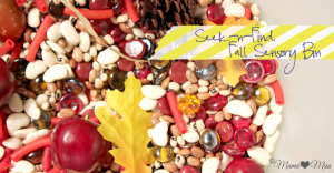 Seek-n-Find Fall Sensory Bin