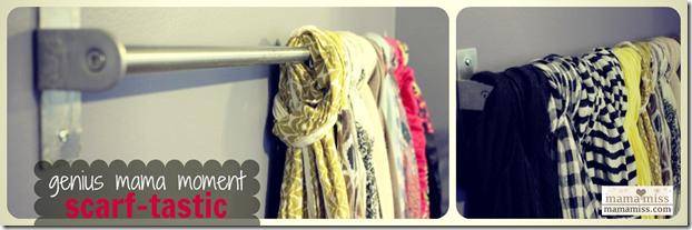 scarf rod