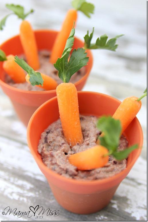 Edible Mini Carrot Garden https://www.mamamiss.com ©2013