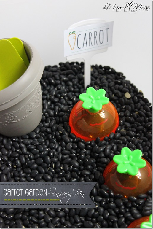 Carrot Garden Sensory Bin https://www.mamamiss.com ©2013