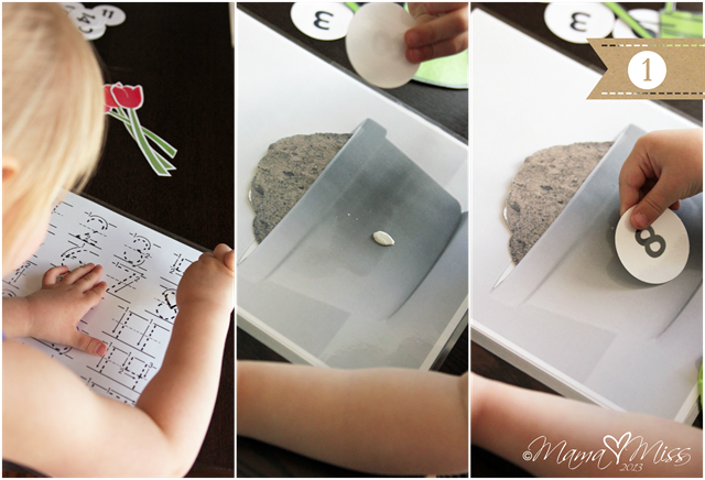 Pretend Play Inspired By Tulips #freeprintable #pretendplay #tulips http://www.mamamiss.com ©2013