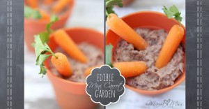 Edible Mini Carrot Garden #healthysnack #kidfood #carrots #blackbeans https://www.mamamiss.com ©2013