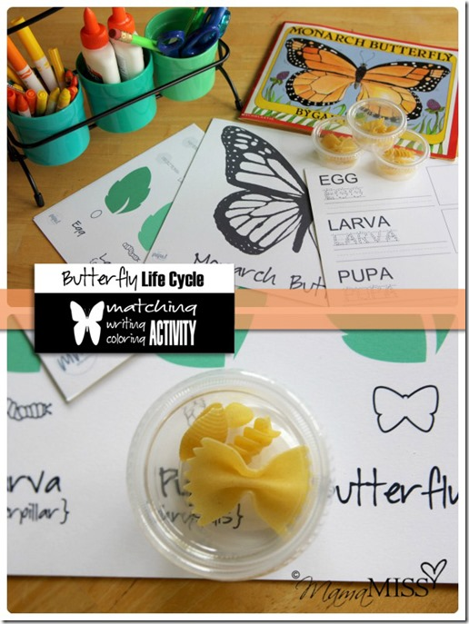 Butterfly Life Cycle Activities | Mama Miss #monarch #kidcrafts #butterfly #homeschool #preschool