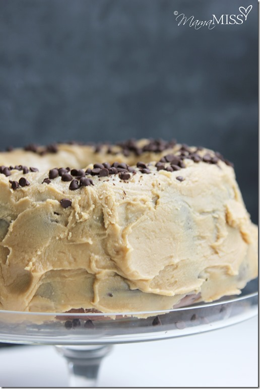 Double Chocolate Chip Cake With Penuche Frosting Mama Miss