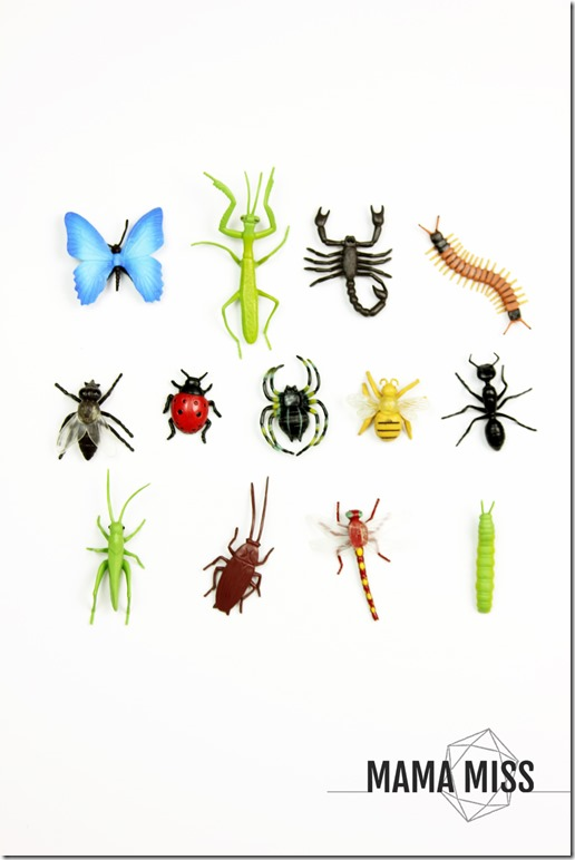 Bug Hunt Sensory Bin | @mamamissblog #bugs #sensorybin #homeschool