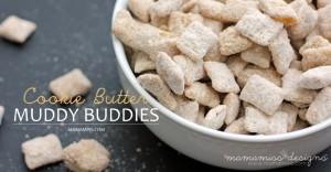 Cookie Butter Muddy Buddies | @mamamissblog #traderjoes #cookiebutter #muddybuddies