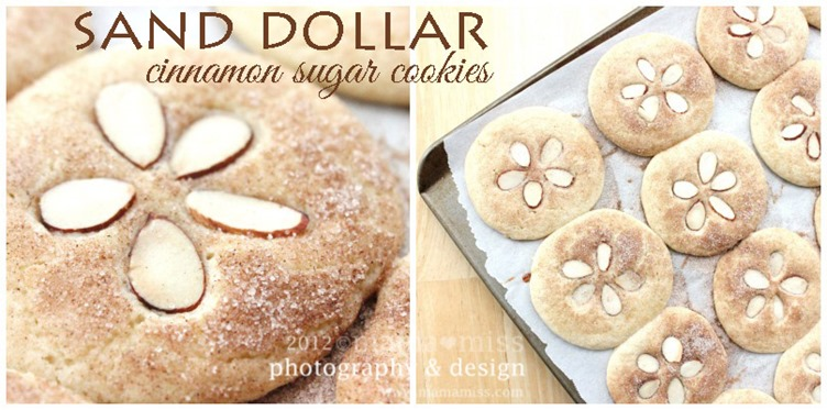Sand Dollar Cinnamon Sugar Cookies | @mamamissblog #sun #surf #sand #beach