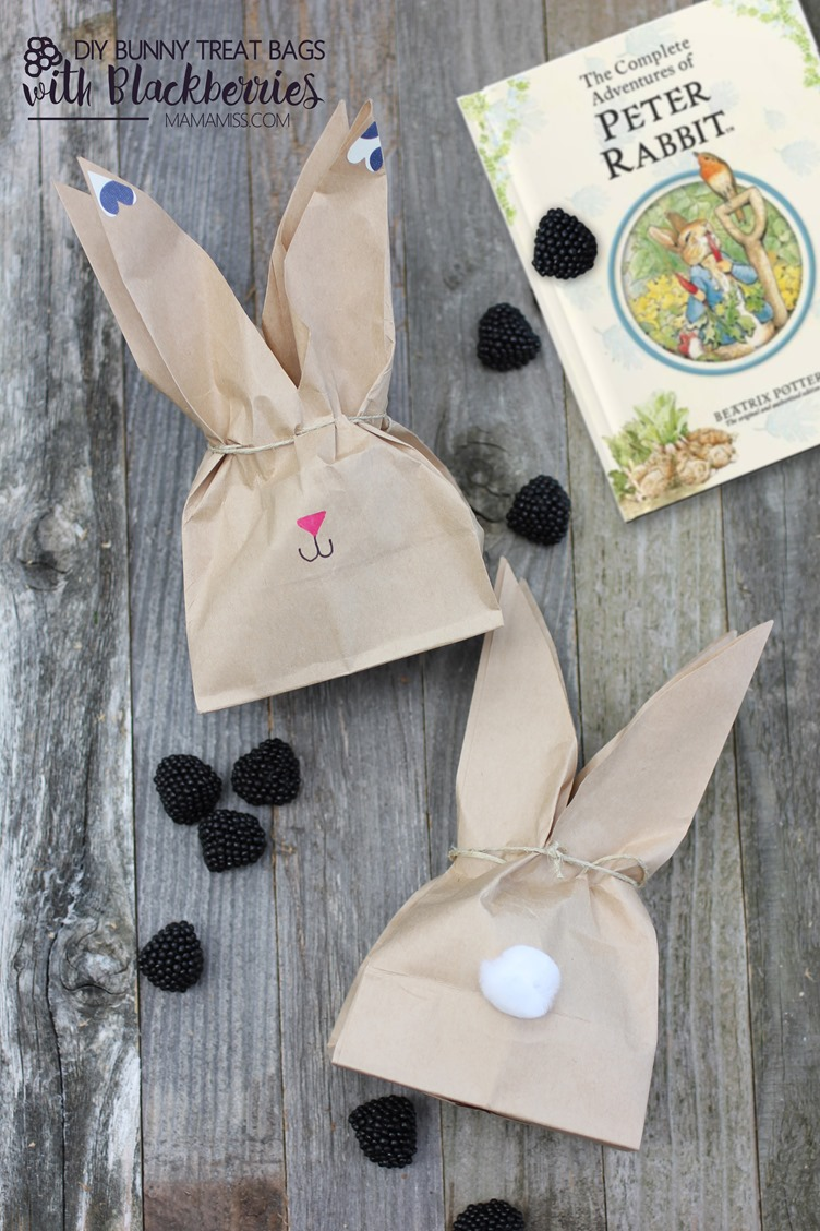 Super cute DIY Bunny Treat Bags filled with Blackberries to accompany The Tale of Peter Rabbit by Beatrix Potter.  From @mamamissblog