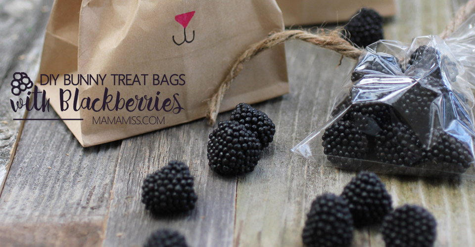 DIY Bunny Treat Bags filled with Blackberries